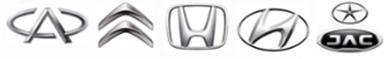 data/nayra-banner/logo1.png